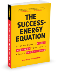 The Success-Energy Equation Book